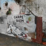ART_AVENUE_Fine Urban Art Carpe Diem Santa Teresa